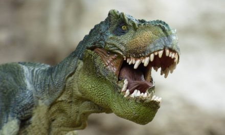 Tyrannosaurus – the most interesting information about these animals